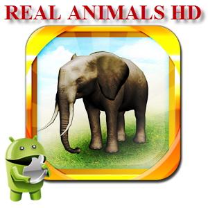REAL ANIMALS HD 1.2.7 [En] - познаём мир животных
